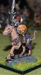 Warhammer fantasy warriors of chaos army painted showcase 4
